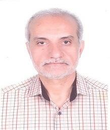 سید علی روح الامین
